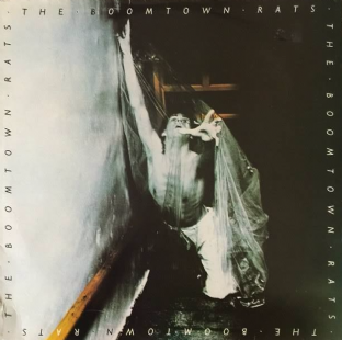 Boomtown Rats (The) ‎- The Boomtown Rats (LP) (G++/G++)